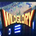 Wild Glory汉化版