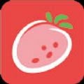 草莓云商app