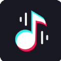 TikTok Shazam app