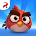 Angry Birds Casual手游