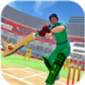 IPL板球联盟中文版